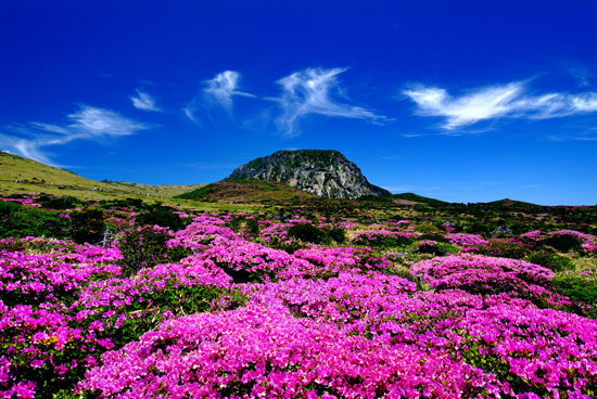 Halla Mountain in Jeju-do Hallasan is a massive shield volcano which forms the bulk of Jeju Island and is often taken as representing the island itself.