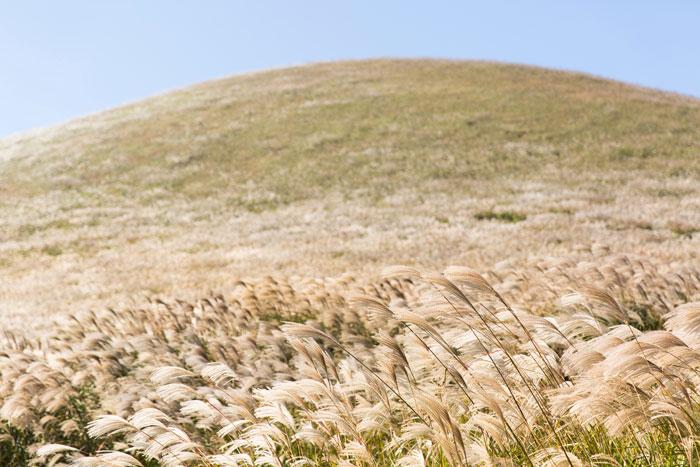 Sangumburi Crater Jejudo South Korea