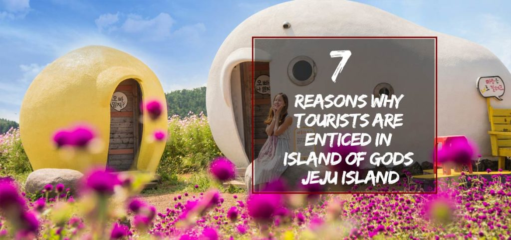 Reasons Why Tourists Are Enticed in Island of Gods – Jeju Island