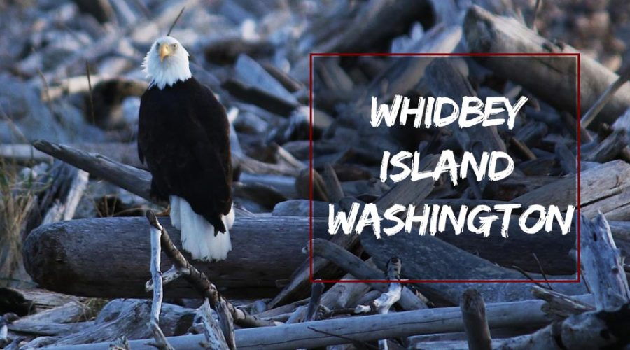 Whidbey Island Washington