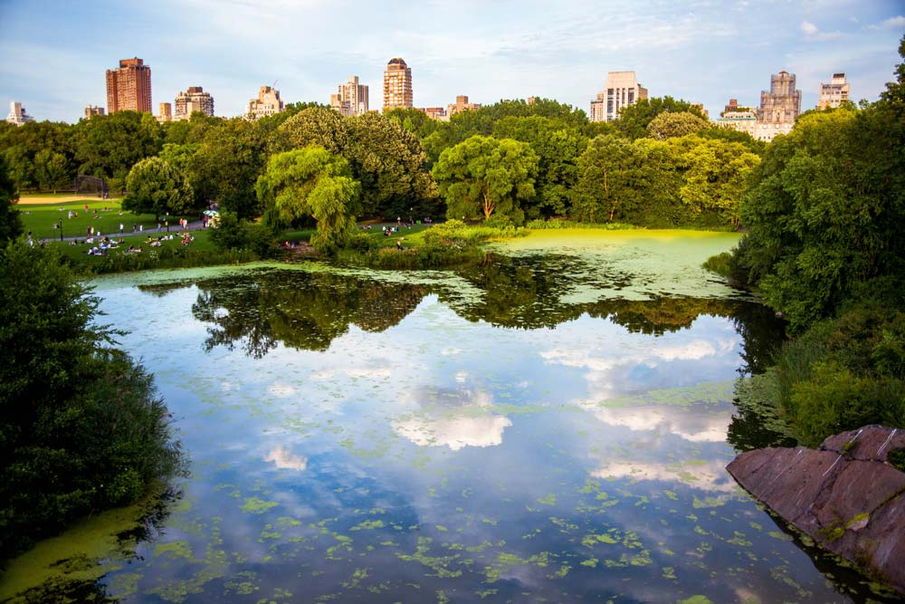 The most iconic Central Park in New York